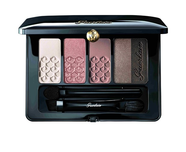Eye Make-up A Harmony of 5 Shades Palette 5 Couleurs